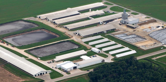 The Wiese Brothers dairy farm in Greenleaf in Brown County is in the lower Fox River watershed. It is one of the largest dairy operations in the state. DNR figures show 6,000 milking and dry cows, in addition to other cattle. (Photo: Mark Hoffman / Milwaukee Journal Sentinel)