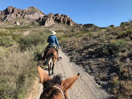 Mule or horseback riding along this multi-use trail is a great way to see the Doña Ana Mountains and enjoy nature at its best.