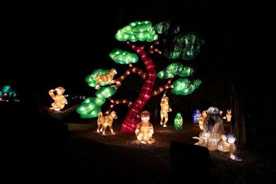 Zoolights es una tradición anual en el zoológico de Phoenix.