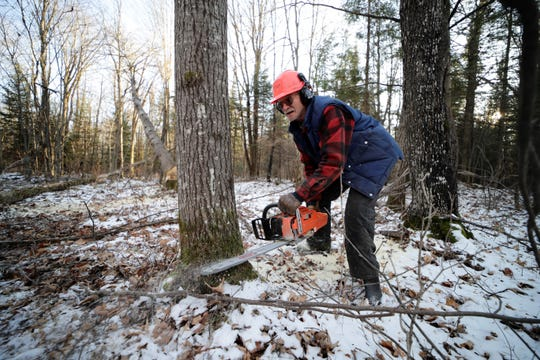 Gary Edinger, of Kennan, cuts a tree Friday, Nov. 15, 2019, on land south of Ogema, Wis. T'xer Zhon Kha/USA TODAY NETWORK-Wisconsin