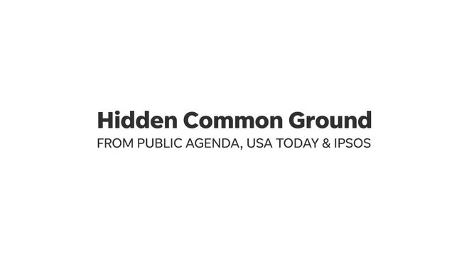 Hidden Common Ground is a partnership among Public Agenda, USA TODAY and IPSOS