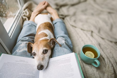 Reading is great, but it's okay if you don't feel like focusing on a book right now.