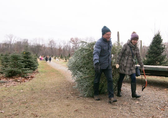 Joel and Ann Maguire carry the trunk-end of a tree they just cut down Friday, Nov. 29, 2019 at Waldock Tree Farm in Iosco Twp. as their son Patrick, not shown, carries the other end of the tree.