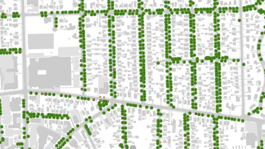 The new inventory GIS system the city of Wauwatosa is using shows the exact location of trees across the city.