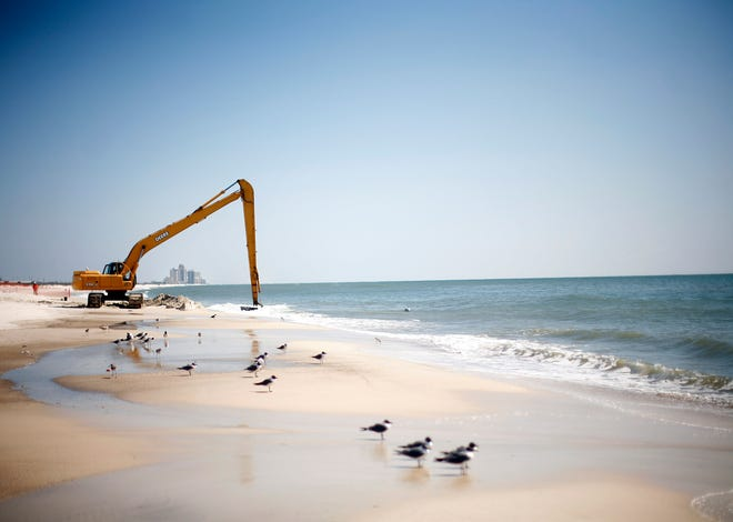 PENSACOLA, FL - MARCH 9: Workers clean oil leftover from the Deepwater Horizon oil spill in the Gulf of Mexico March 10, 2011 at Perdido Key State Park in Pensacola, Florida. With Spring Break approaching, crews continued to work to remove leftover oil from beaches along the Gulf Coast. (Photo by Eric Thayer/Getty Images)
