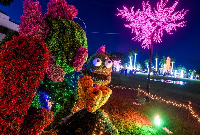 An an undersea-themed topiary is part of a holiday light display illuminated during a tree lighting ceremony at Skinner Plaza in Hagåtña on Saturday, Nov. 30, 2019.