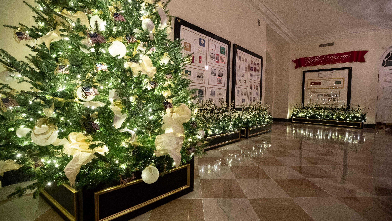 heed moldy Christmas trees