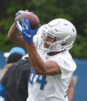 Lions rookie wide receiver Travis Fulgham has yet to play in a regular-season game this season.