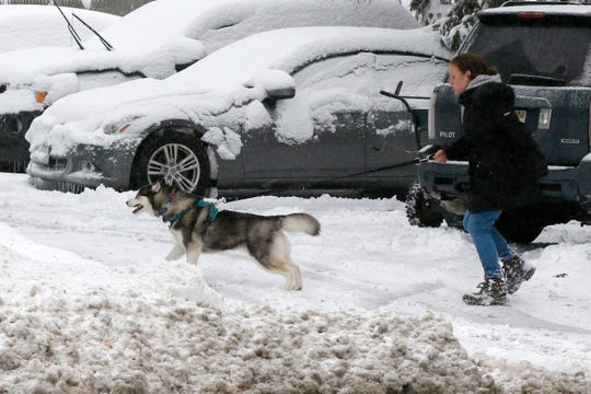 A woman walks her dog in the snow after an overnight snowfall, Monday in Marlborough, Mass.