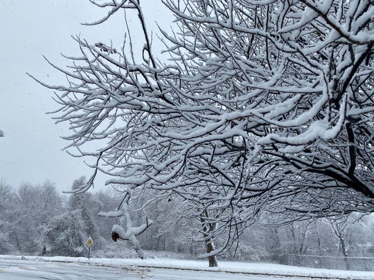 Snow in Woodland Park Dec. 2, 2019.
