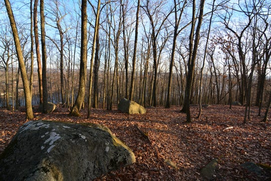 Another view along the hike on Danbury's Bear Mountain.