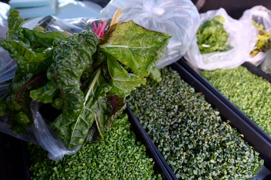 Swiss Chard, top left, and mustard, radish and oregano micro-greens, are packaged up for Victoria Close, owner of Crostwater Distilled Spirits. Students at Cedar Cliff and Red Land High Schools are developing green thumbs with the West Shore Aquaponics lab. 