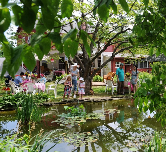 The Barn Studio of Art will host a Once A-Pond A Time art sale to benefit the restoration of the studio's pond.