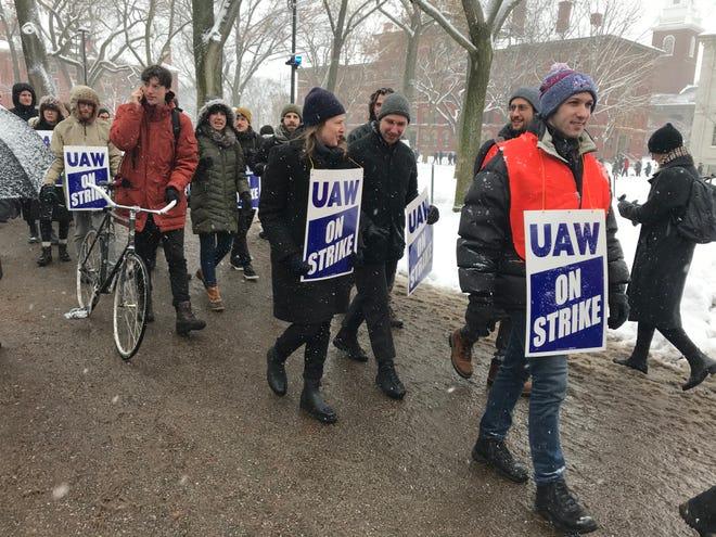 Harvard University graduate student workers picket at Harvard Yard.
