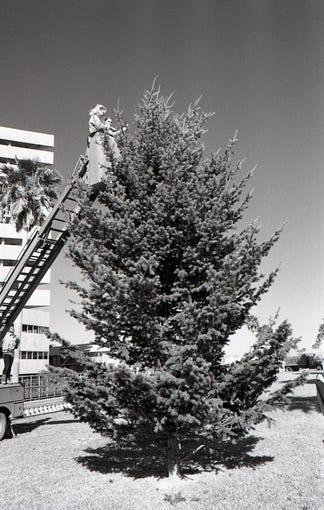 Corpus Christi Junior Leaguers Janie Magee (left) and Ginger Perryman place the first lights on the giant Christmas tree in the 400 block of Shoreline Boulevard on Dec. 16, 1980 in preparation for the first Harbor Lights Festival. The event is now an annual tradition.