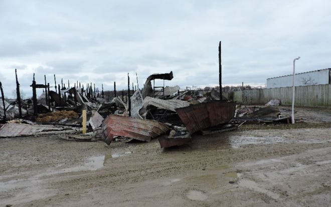 Investigators from the Division of State Fire Marshal's Fire and Explosion Investigation Bureau have been unable to determine the cause of the blaze that killed 10 animals at the African Safari Wildlife Park on Thanksgiving night.