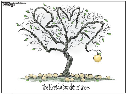 Florida's government is meant to operate in the Sunshine. Except for the exemptions.