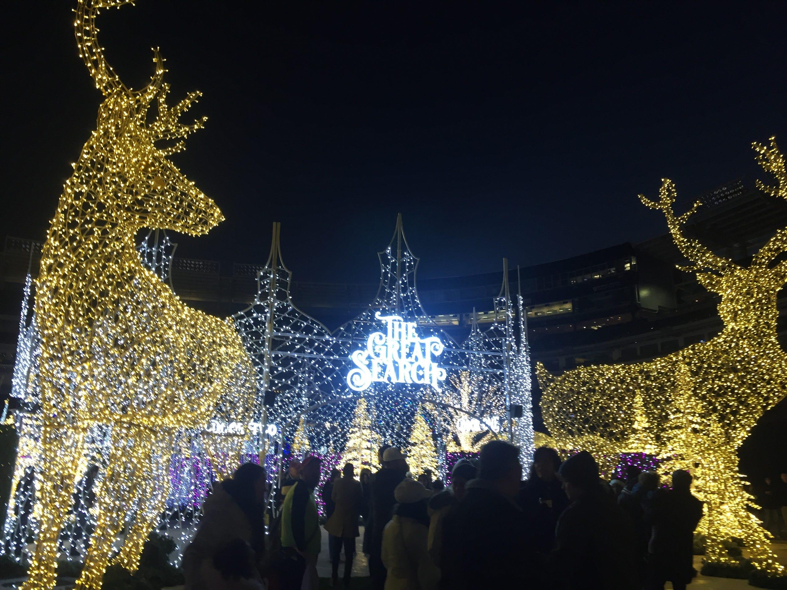 Enchant Christmas light maze: Photos