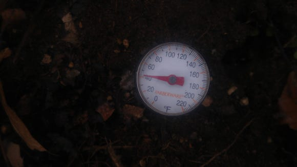 Soil temperatures are relatively warm for this time of year.