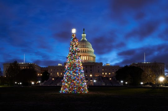 The People's Tree on the lawn of the U.S. Capitol.