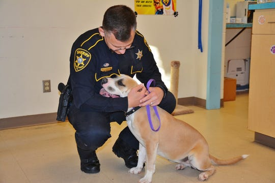 Bossier Deputy Dusty Crenshaw adopts Mia, who he helped rescue from a busy I-20.