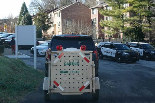 Police and animal control continue to search for  a bear that has been sited in Trolley Square on Thursday morning.