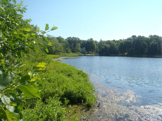 DNR parcels 129240, 376720 and 1040033 make up the 5.5 acres for sale on Lower Scott Lake in Allegan County.