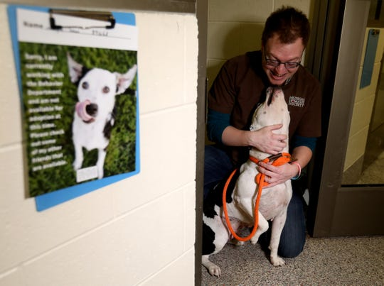 Jeremy Colborn, 29 of Lansing plays with Norma Jean in her kennel at the Michigan Humane Society in Westland, Michigan on December 5, 2019.Colborn is one of many people here who work with the behavior of dogs and cats that come to in to hopefully be adopted. The staff spend time with the animals to determine their moods, disposition and make sure how they are is a good fit with people or families that come in to adopt them.