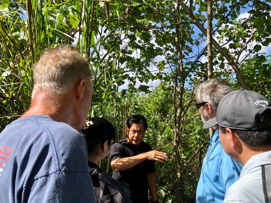 With a portion of Agana Swamp behind him, Mongmong-Toto-Maite Mayor Rudy Paco gestures as he talks to Naval Facilities Engineering Command Pacific's Elaine Lampitoc and representatives from the Guam Environmental Protection Agency and AECOM during a site visit on Dec. 5, 2019. Fish samples are being taken from Agana Swamp to check whether they have polychlorinated biphenyls.