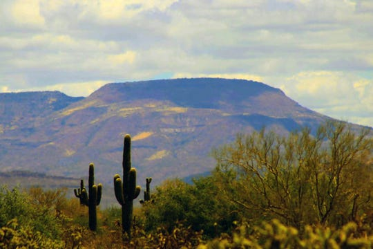 A classic Arizona desert scene is seen in north Phoenix in a photo submitted by reader Sandra Bratset.