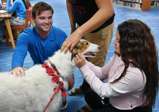 Midwestern State University students Austin Bradley and Daniela Baez visit with Neva, a Russian Wolfhound owned by Janet Browne.