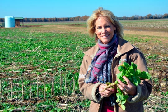 Annie Dee holds a turnip she uses as a cover crop at the Dee River Ranch in Aliceville, Ala. on Nov. 25, 2019.  Dee, who runs the Dee River Ranch in Pickens County, is one of a growing number of farmers who are signed up to get paid to sequester carbon in the soil using what are being called regenerative farm techniques.