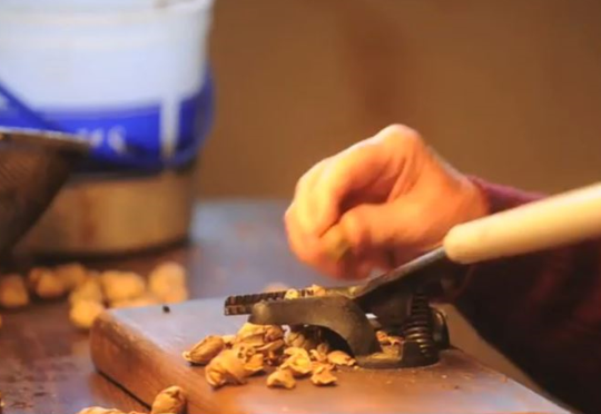 Pete Costello has worn out the jaws of several customized nut-cracking tools.