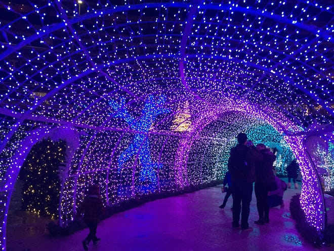 Enchant Christmas light maze: What we