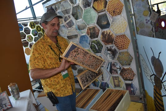 Andy Havard, owner of HandyAndy Apiaries, created a honeycomb exhibit with photos he took so children can view a honeycomb and learn about honeybees.