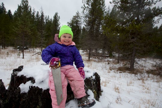 Rollie Urness, 3, is ready to find a Christmas tree to cut in Oregon's Willamette National Forest.