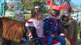 Jackson celebrates at Christmas in the City 2019