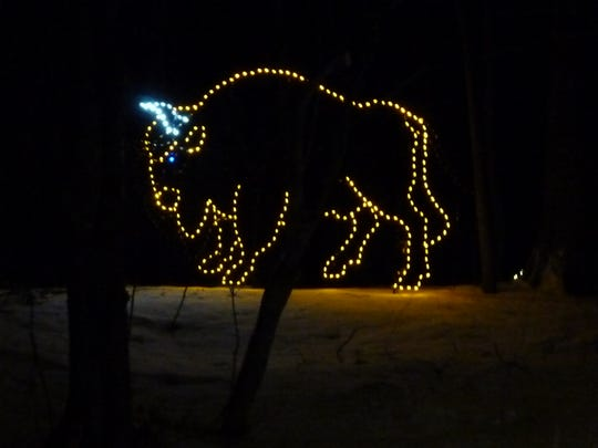 This bison display is just one of many animalsat Lights in Lincoln Park. This light show is in its eighth year of production.
