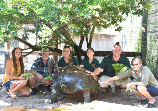 University representatives visit the Zoo and meet another threatened species, the Galapagos tortoise.
