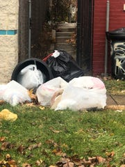 This is one of the issues with trash in any city: garbage bags left outside that attracts squirrels and raccoons. Animals tear open bags, and trash scatters through neighborhoods.