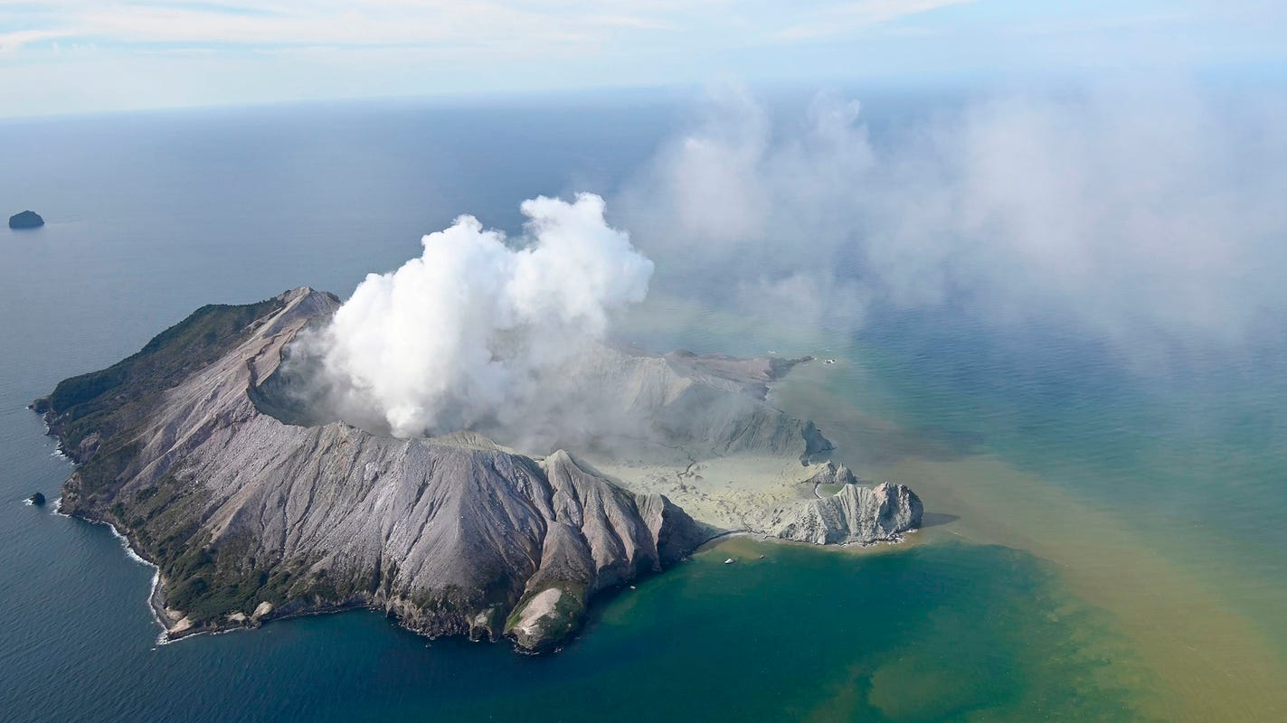 New Zealand orders 186,000 square inches of skin from US for volcano victims