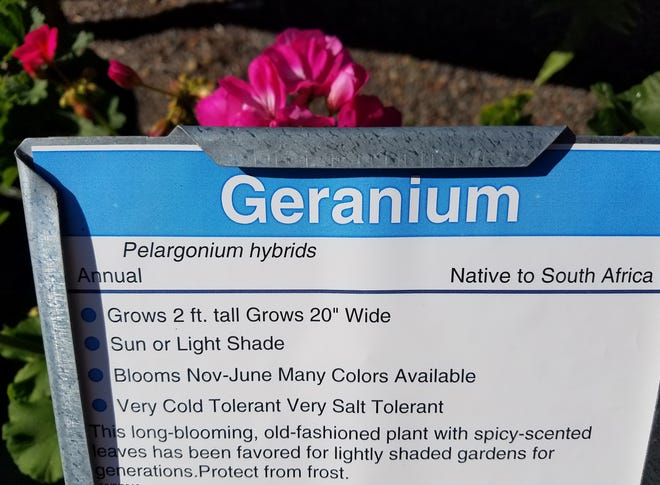 Scientific plant names can be important, especially when dealing with edible plants.