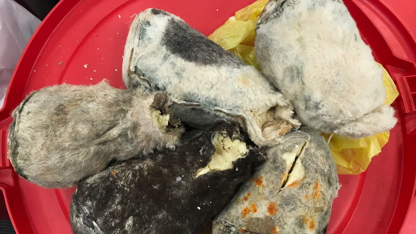 Travelers from Turkey had contraband: Soft cheese packed in animal skins