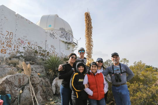 Pio Sanchez, Pio Sanchez Jr., Tina Sanchez , Eileen Garcia, Anjolina Garcia and Aneva Martinez make yucca walking sticks durring the pilgrimage to the top of Tortugas Mountain as part of the Lady of Guadalupe festival in Las Cruces on Wednesday, Dec. 11, 2019.