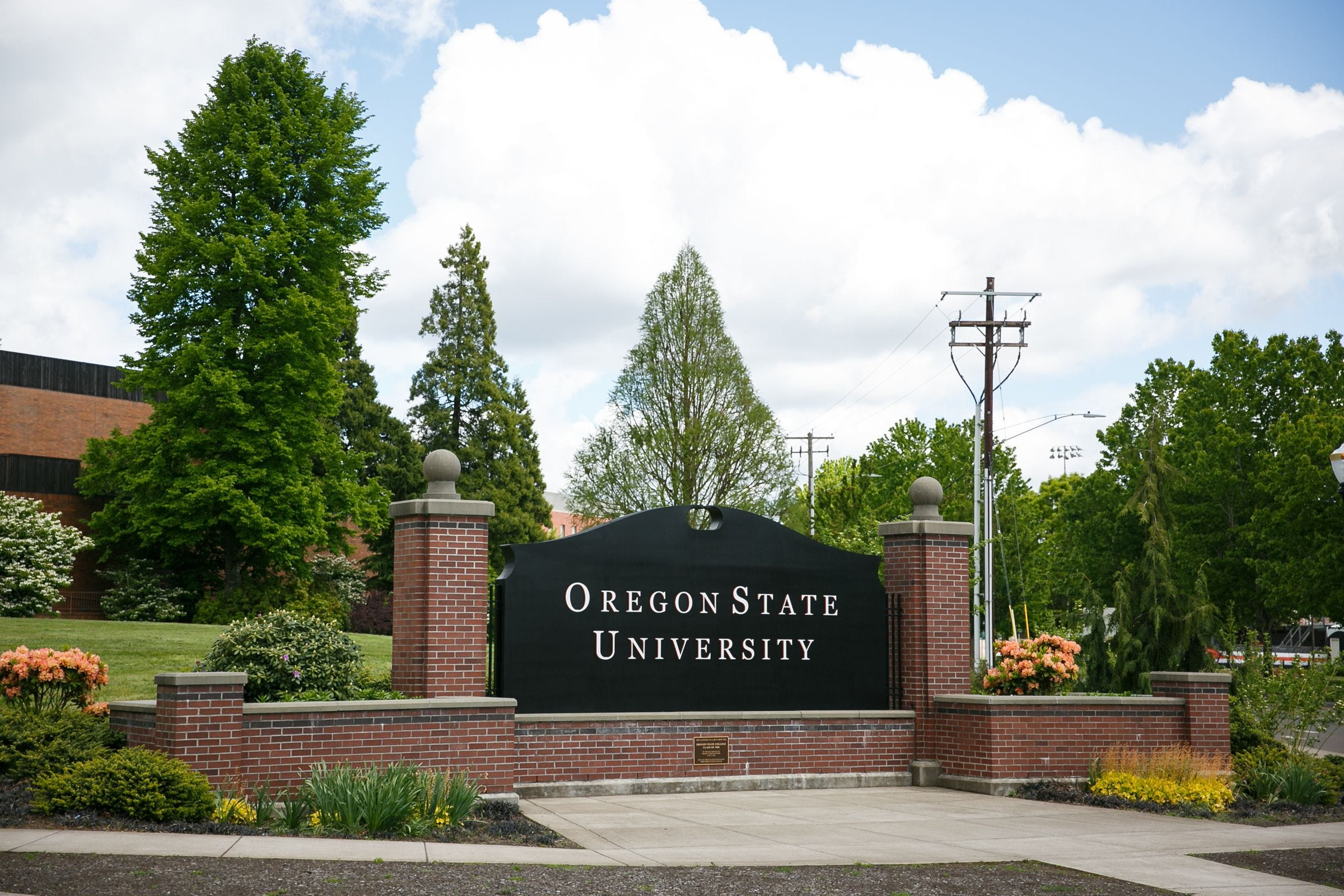 The Oregon State University campus in Corvallis.