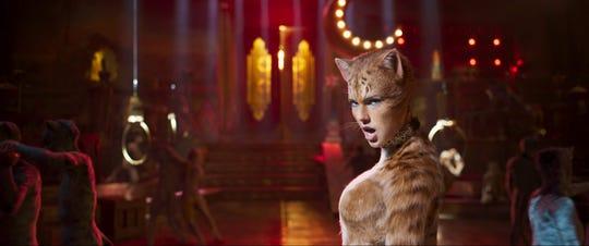"Film ensemble: ""Cats"""
