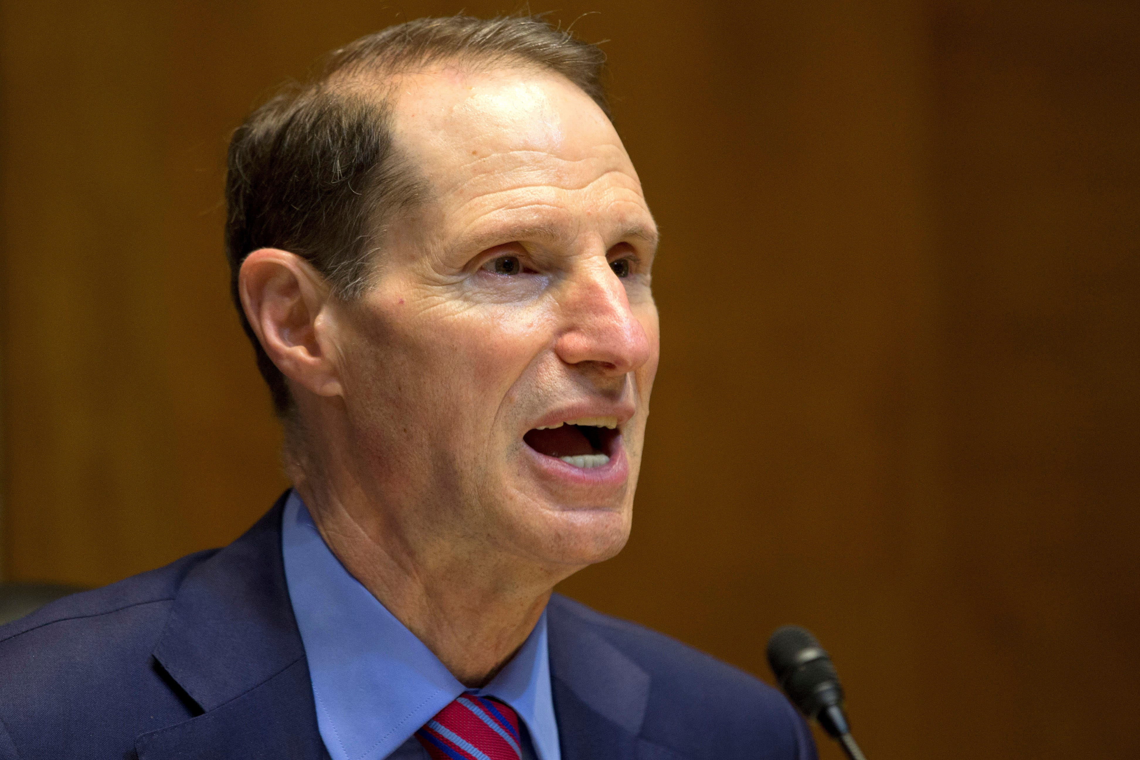 U.S. Sen. Ron Wyden, D-Oregon, speaks on Capitol Hill in Washington in this 2013 file photo.