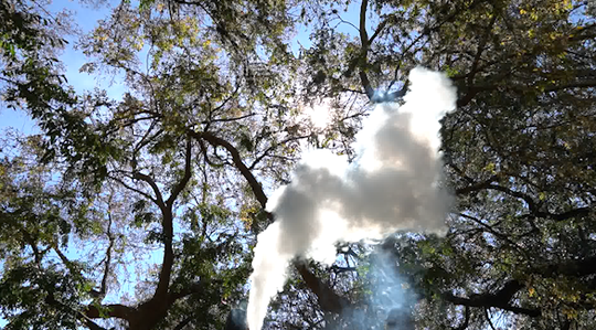 A cloud of vaping smoke rises on the LSU campus.