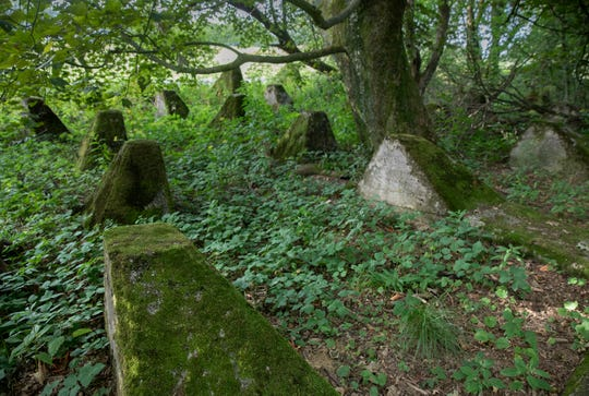 World War II anti-tank obstacles, known as Dragon's Teeth, are covered in moss near Simmerath, Germany. The square-pyramidal fortifications of reinforced concrete first used by the German Army during World War II to impede the movement of tanks and mechanized infantry.