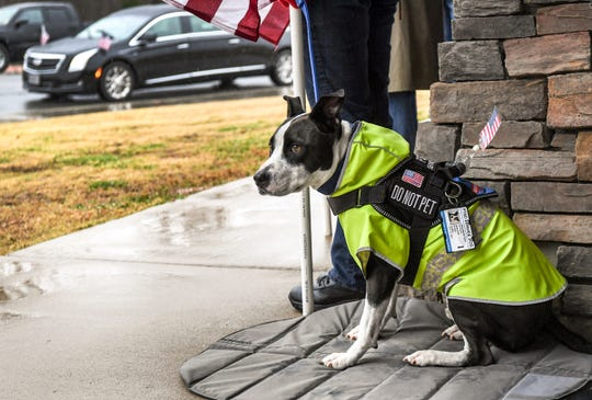 Wrangell, a PTSD therapy dog with his owner Kim Woods of Greer, watches as a hearse arrives for the funeral for United States Army veteran William D. Rowland, 64, homeless in the Pickens area, at Dolly Cooper Veterans Cemetery in Anderson Friday, December 13. Private Second Class Rowland was born 1955 in Pickens, enlisted in the United States Army in 1972 and later received a National Defense Service Medal as a rifle Sharpshooter.